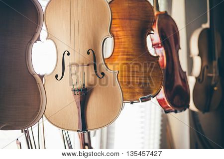 Handmade violin in luthier workshop next to the window