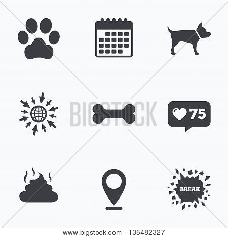 Calendar, like counter and go to web icons. Pets icons. Dog paw and feces signs. Clean up after pets. Pets food. Location pointer.