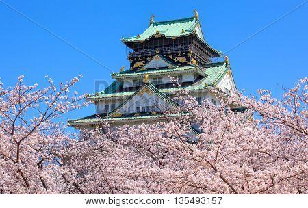 Osaka castle in cherry blossom season Osaka Japan