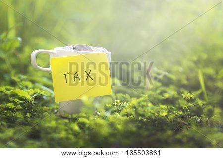 Coins in glass money mug with TAX label blurred grass view at background. Financial concept.