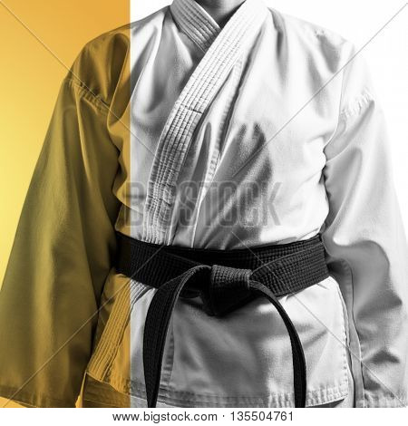Mid section of karateka against yellow vignette