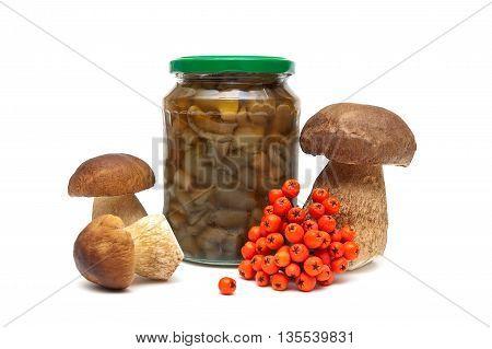 rowan berries fresh and marinated mushrooms on a white background. horizontal photo.