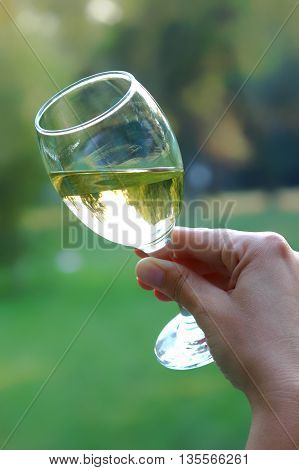Toast with delicious Chardonnay glass of wine