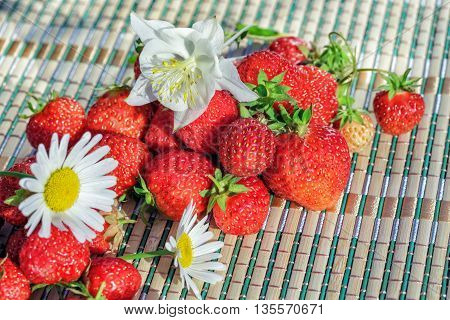 Fresh strawberries on table in the garden