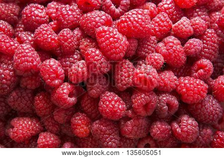 Background of fresh red raspberries. Stock Photo.