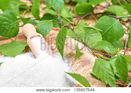 Xylitol birch sugar on a birch background