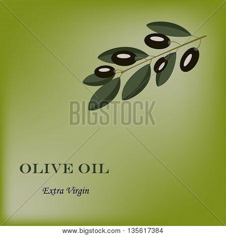 Black olive branch on green background. Olive composition.