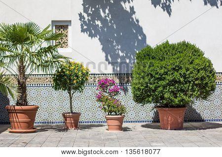 Berlin Germany - june 23 2016; The Oriental garden in gardens of the World ( Gaerten der Welt) in Berlin Germany.