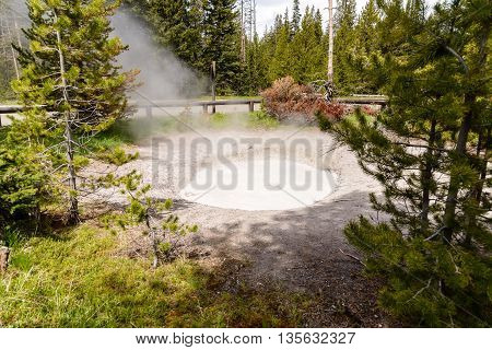 Yellowstone United States - May 31 2015: Mudpot in Yellowstone National Park steam and limy shoreline people on boardwalk West Thumb area of Yellowstone National Park Wyoming.