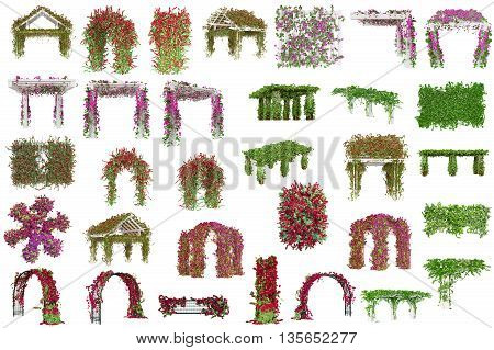 Set pergolas with plants, purple flowers and green leaves. 3D Graphic