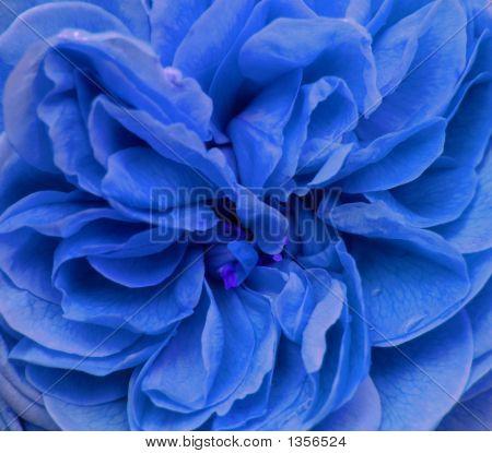 Stilisierte blaue Blume