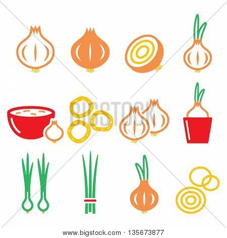 Onion, spring onions colorful icons set  - food, nature concept