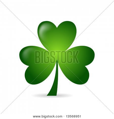 Irish shamrock ideal for St Patrick's Day isolated over white background