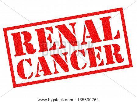 RENAL CANCER red Rubber Stamp over a white background.