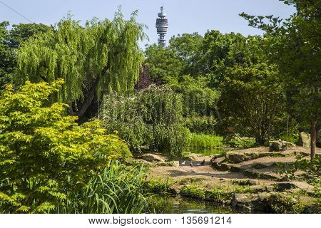 A view of the iconic BT Tower in the distance with the Japanese Island Garden in the foreground located in Queen Marys Gardens in Regents Park London.