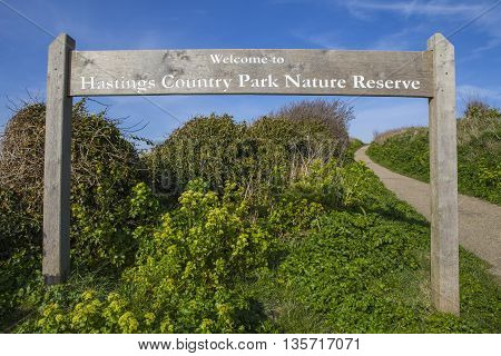 A view of the beautiful Hastings Country Park Nature Reserve in Hastings Sussex.