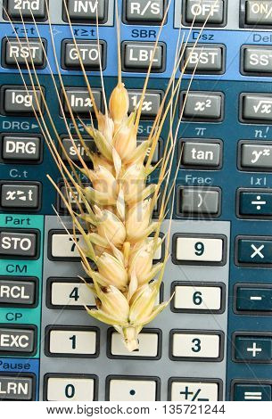 picture of a wheat ears on a calculator keypad