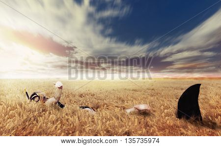 Woman Has A Close Encounter With A Shark In A Field Of Wheat