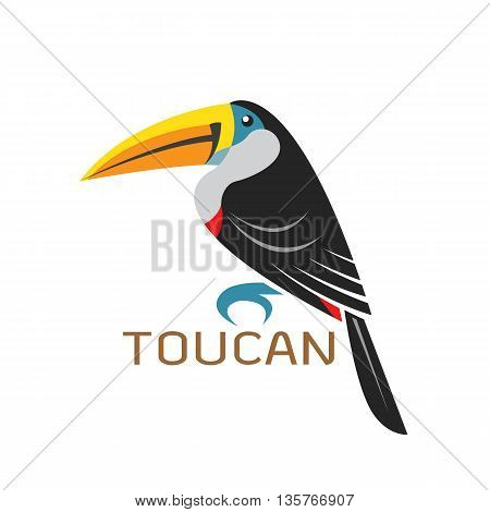 Vector images of toucan design on a white background Vector toucan for your design