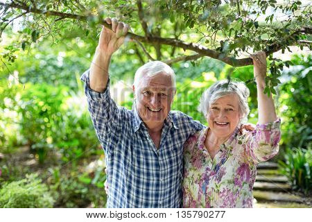 Portrait of happy senior couple holding branch in back yard