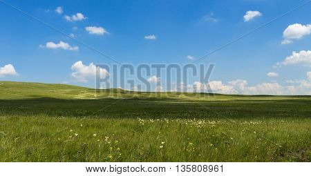 Beautiful green summer steppe, tourism, travel, serenity, panorama