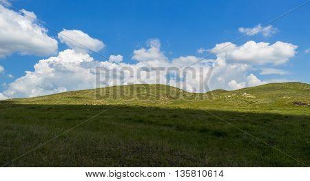 Beautiful green summer steppe, hills, travel, serenity poster