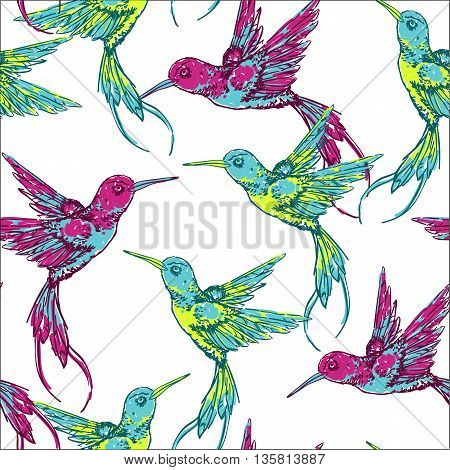 Hand draw tropical background with colibri bird.Vector seamless pattern