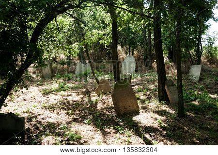 Grave stones at historic Jewish cemetery in Slovakia