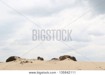 Cloudy sky above a sandy dune rim with room for text