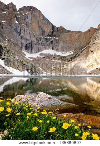 Chasm Lake and Wildflowers Below The Diamond Face of Longs Peak. Rocky Mountain National Park, Colorado.