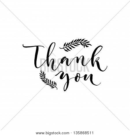 Thank you card. Hand drawn lettering backgroudn. Greeting poster. Ink illustration. Modern brush calligraphy. Isolated on white background.