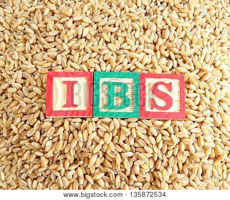 Concept of wheat and irritable bowel syndrome (IBS) relation.