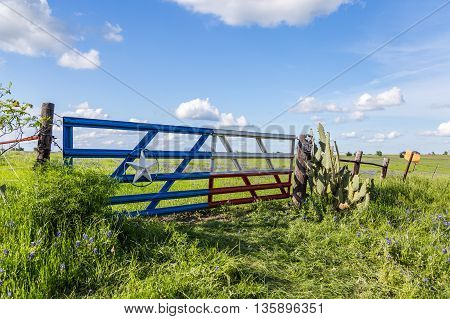 bluebonnet field in countryside of Ennis Texas
