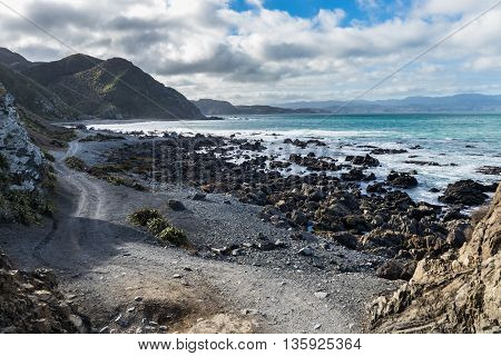 Te Kopahou Reserve is found on south of Wellington city New Zealand.