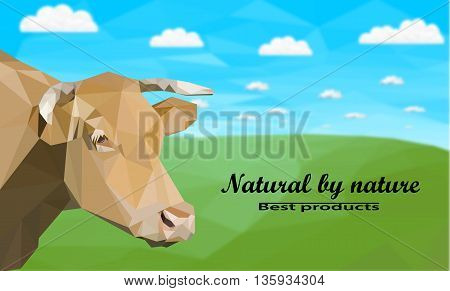 The head of a cow in the meadow . Polygonal vector illustration
