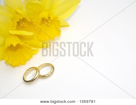 Spring Wedding With Gold Rings