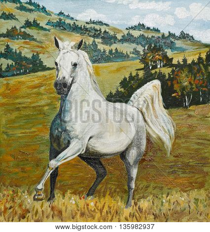 oil painting - white horse galloping in field old portrait illustration