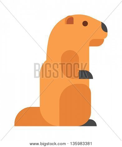 Vector illustrated badger.
