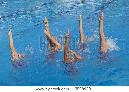 Synchronized swimmers legs movement. Synchronized swimming team performing a synchronized routine of elaborate moves in the water.