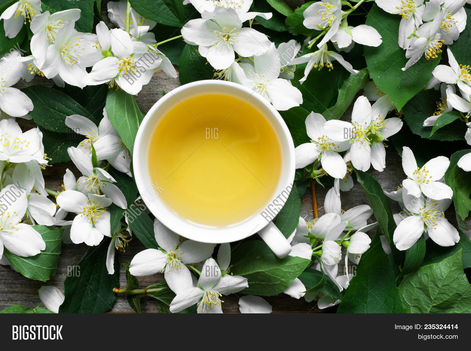 Cup Green Jasmine Tea Image Photo Free Trial Bigstock