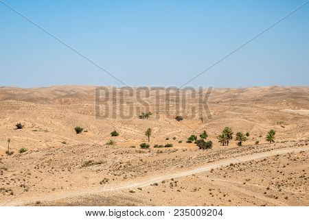 A Dry Desert Landscape With Palm Trees And Hills On A Sunny Day With A Clear Blue Sky