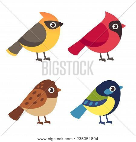 Set Of Cute Cartoon Small Birds: Cedar Waxwing, Northern Cardinal, Common Sparrow Ant Blue Tit. Simp