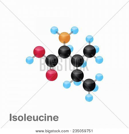 Molecule Of Isoleucine, Ile, An Amino Acid Used In The Biosynthesis Of Proteins, Vector Illustration