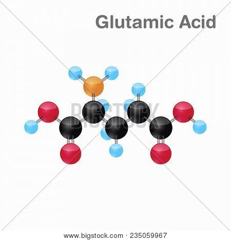 Molecule Of Glutamic Acid, Glu, An Amino Acid Used In The Biosynthesis Of Proteins, Vector Illustrat
