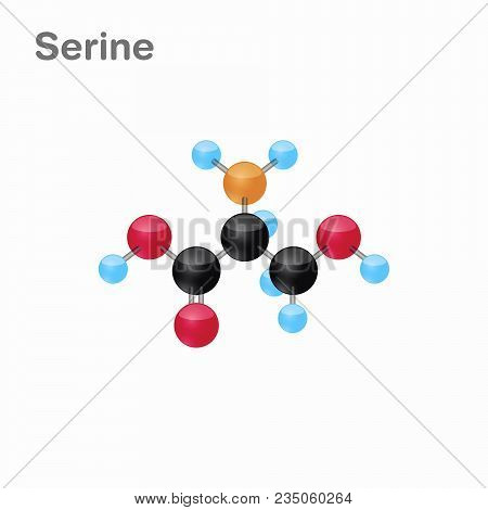 Molecule Of Serine, Ser, An Amino Acid Used In The Biosynthesis Of Proteins, Vector Illustration