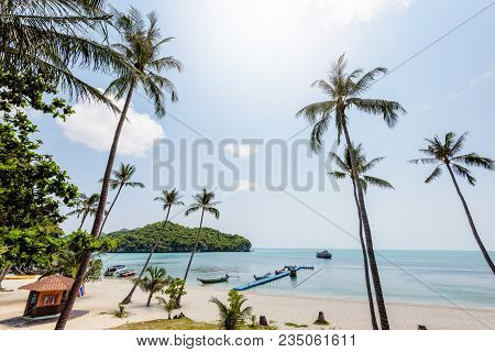 Beautiful Natural Landscape Coconut Trees On The Beach And The Sea At Ko Wua Ta Lap Island. Under Th