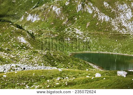The Valley Of The Mountain With The Lake And The Flock Of Sheep That Graze In Valsabbia, Brescia, It