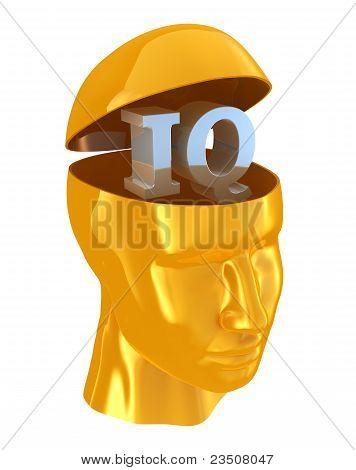 Iq Intelligence Quotient