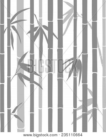 Bamboo Background. The Vertical Stems Of Bamboo On A White Background. Oriental Theme. Vector Illust