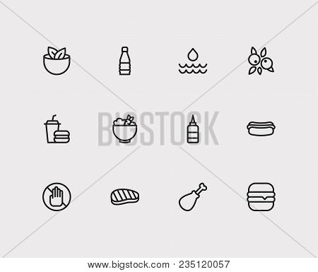 Meal Icons Set. Vegan And Meal Icons With Allergic, Chicken Meat And Water. Set Of Elements Includin